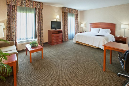 Hampton Inn & Suites Wilmington : Spread out in our Studio Suites featuring a sleeper sofa, microwave & refrigerator.