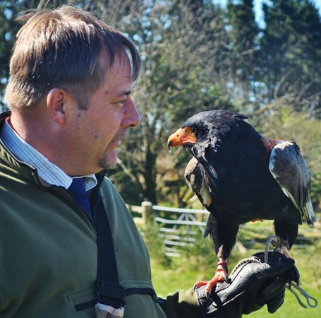 Phoenix Falconry: Adrian chatting to his battaleur!