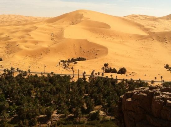 Bordj Taghit: Vue : Palmeraie/Dunes