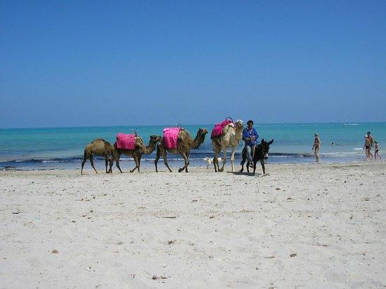 Ksar Djerba: Stranden
