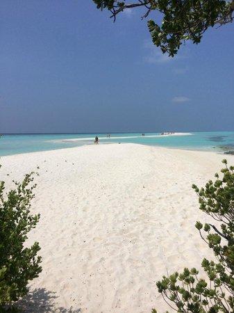 Kuramathi Island Resort : Lingua di sabbia
