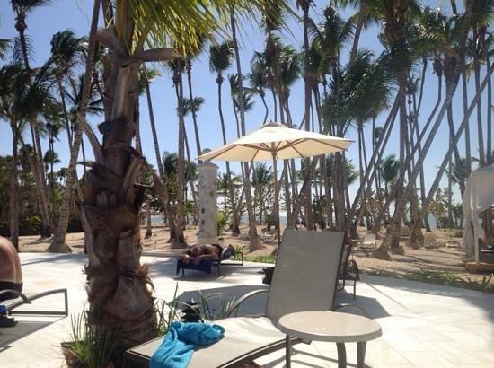 Luxury Bahia Principe Bouganville Don Pablo Collection : beach area