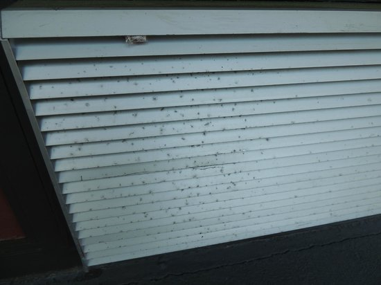 Days Inn Port Royal/Near Parris Island: Air conditioning unit