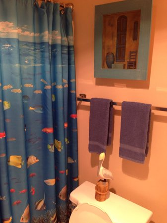 Wiggins Pass Chalet : bathroom pic