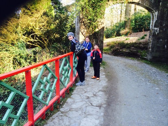 Mount Congreve House and Gardens: Surprise feature