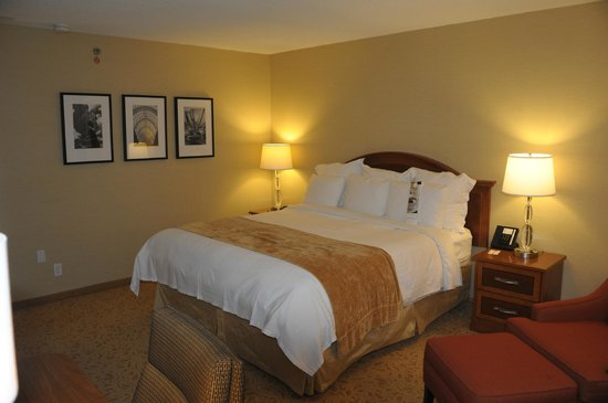 Toronto Airport Marriott Hotel: Perhaps the most comfortable bed in all of hoteldom.