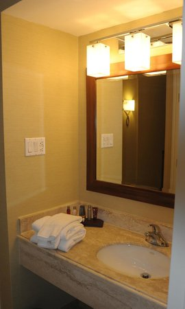 Toronto Airport Marriott Hotel : Very clean and well lit sink area with upscale toiletries