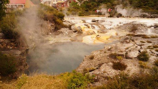 Whakarewarewa - The Living Maori Village: Thermal Pool