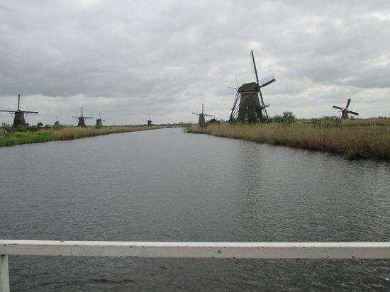 Réseau de moulins de Kinderdijk-Elshout : windmills