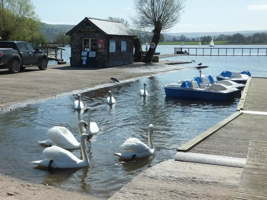 Llangorse Lake: The Boat Hire Shed