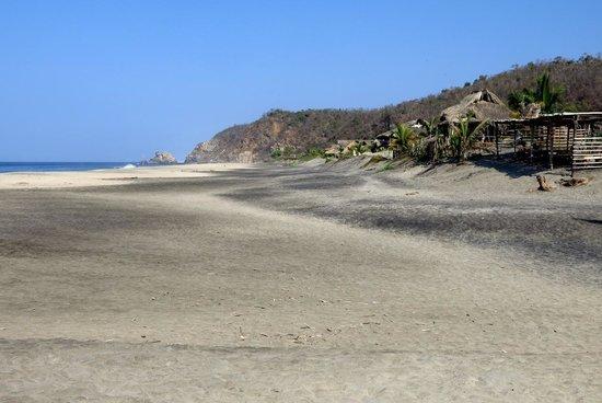 OceanoMar : The beach one minute away