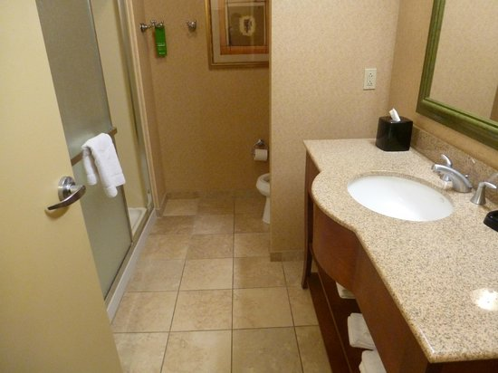 Hampton Inn & Suites Pittsburgh - Downtown: Baño grande y limpio