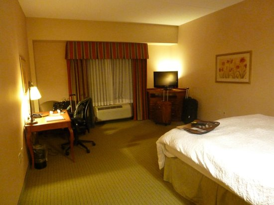 Hampton Inn & Suites Pittsburgh - Downtown: Habitación enorme