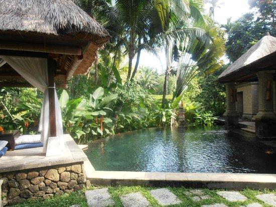 Arma Museum & Resort : Villa con piscina privada