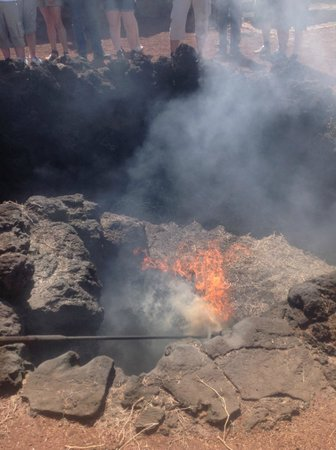 Parque Nacional de Timanfaya: The burning Bush