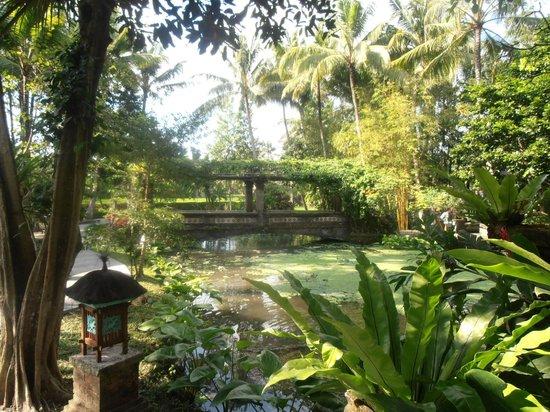 Arma Museum & Resort : Resort