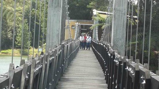 Santa Elena, Colombia: Puente sobre la represa en el Parque ecolígico Piedras Blancas.