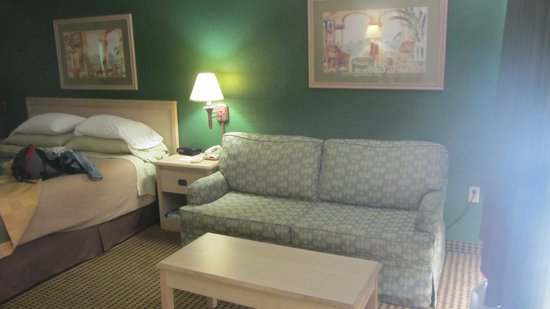 Knights Inn Sarasota: kingbed