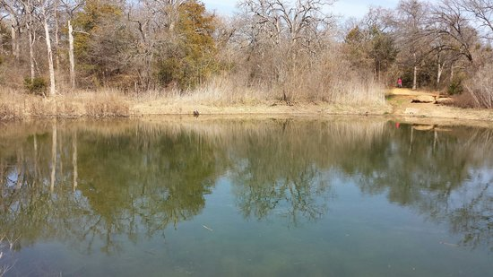 Elmer W. Oliver Park: One of the ponds at the park.