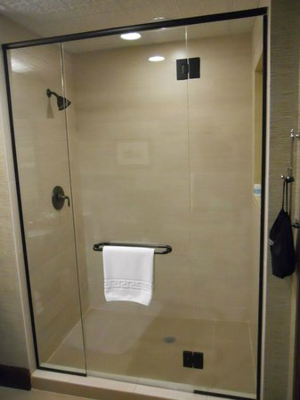 Omni Austin Hotel Downtown : Shower in Suite