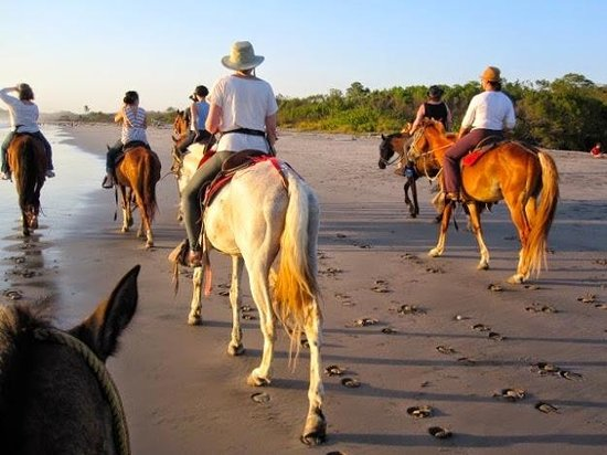 Blue Spirit: Sunset Horse Riding Trip on Beach
