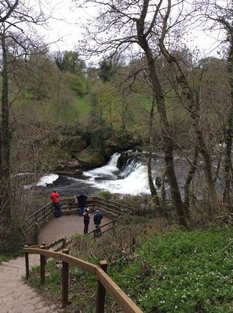 Fairview Guest House: aysgarth falls