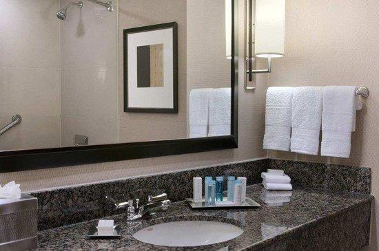 Hilton Hasbrouck Heights / Meadowlands: Guest Room Bathroom
