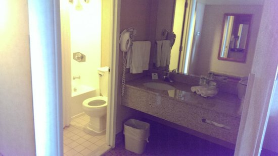 Holiday Inn Express Midtown Philadelphia: Vanity and the bathroom