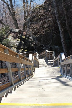 Chimney Rock State Park: Going down was easier!