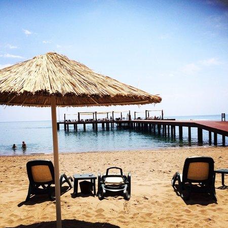 Gloria Verde Resort and Spa: Utsikten från solstolarna på hotellets strand