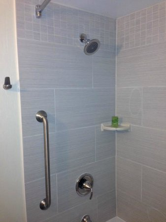 Embassy Suites by Hilton Baltimore - Inner Harbor: shower