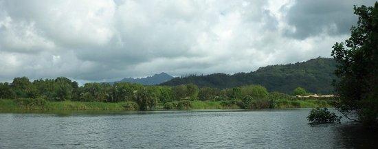 Kayak Hanalei: More river