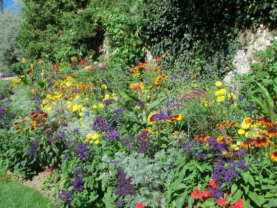 La Citadelle de Besançon: Flora