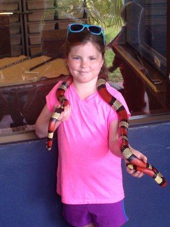 Reptile World Serpentarium : Fun for all