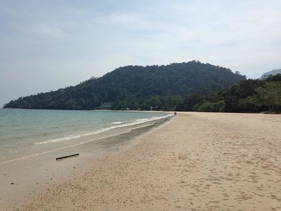 The Andaman, A Luxury Collection Resort : Great beach setting for a hotel!