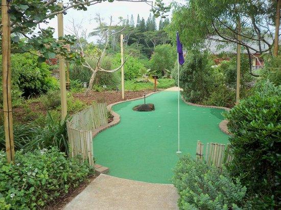 Kauai Mini Golf: Neat design
