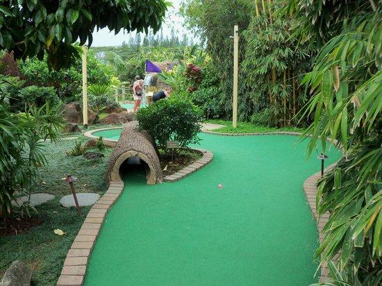 Kauai Mini Golf: Tricky tunnel