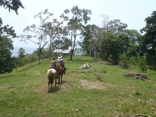 Panama Horseback Adventures: Returning