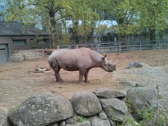 Tierpark: 3