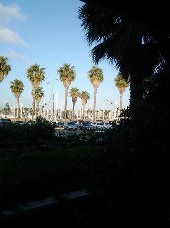 The Portofino Hotel & Marina, A Noble House Hotel: Marina view