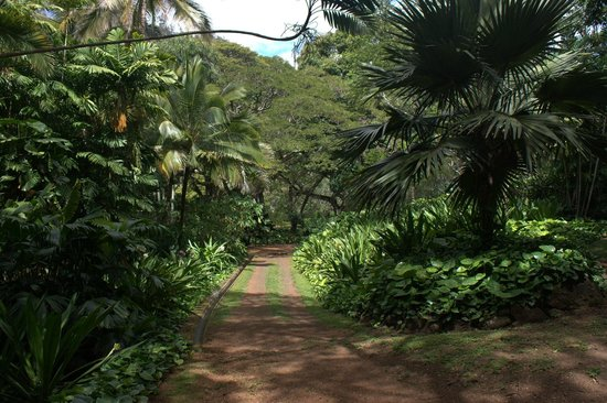 The park picture of national tropical botanical garden - National tropical botanical garden ...