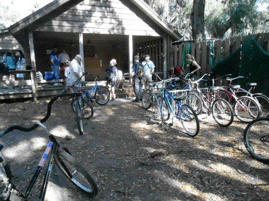 Cumberland Island National Seashore: The bicycle rental area.
