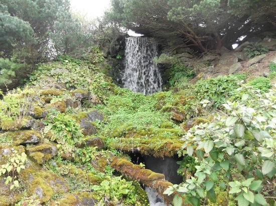 Royal Botanic Garden Edinburgh: The Waterfall