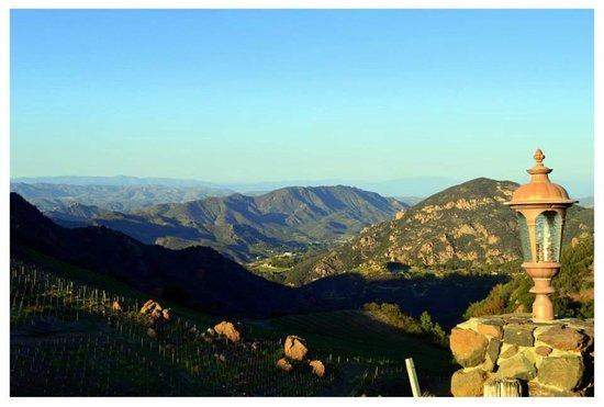 Malibu Wine Safaris: Landscape view