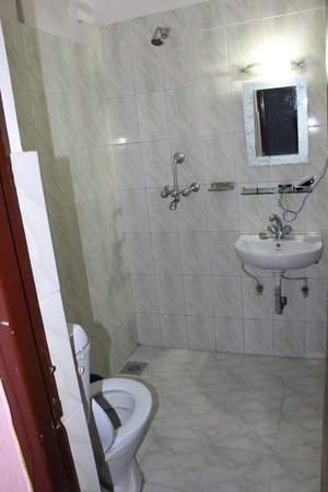 Hotel Backpackers INN: bathroom