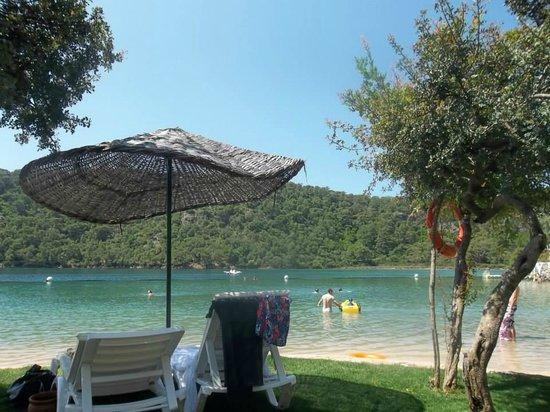 Suncity Hotel & Beach Club: Hotels beach