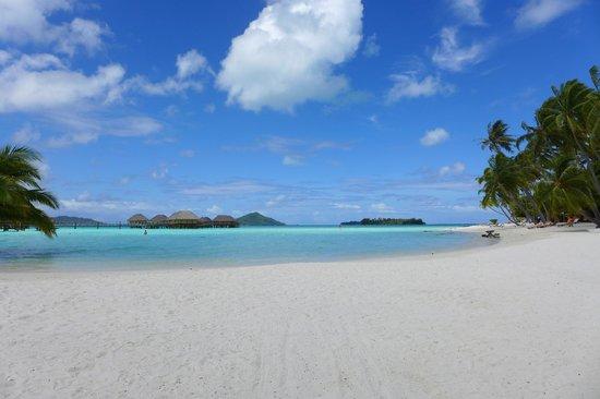 Bora Bora Fishing Paradise Lodge : 30 minute walk beach from lodge