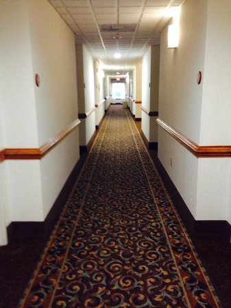 Sleep Inn & Suites: Hallway