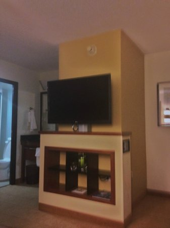 Hyatt Place Auburn Hills : TV in room