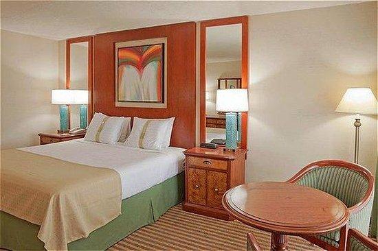 Holiday Inn Niagara Falls - By The Falls: King Bed Guest Room